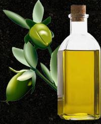 Les bienfaits de l'huile végétale de Jojoba bio