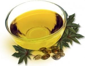 Huile végétale Jojoba bio (Simmondsia chinensis)